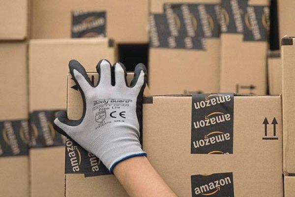 "ARTÍCULO: ""Amazon anota ingresos récord"""